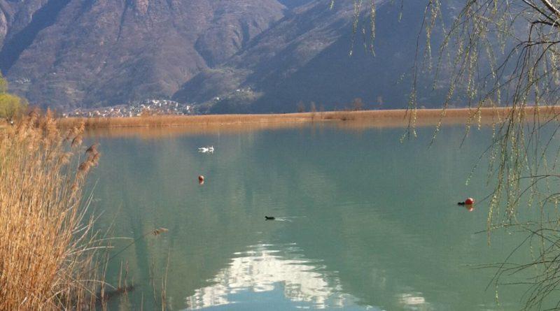 lago di Como, dascio