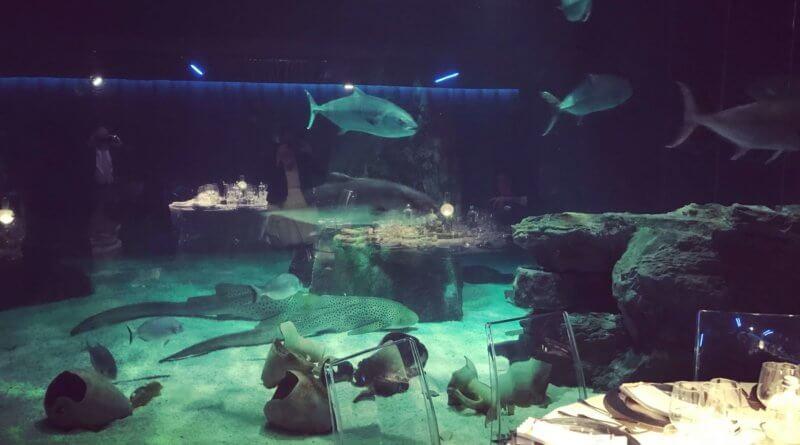 genova acquario