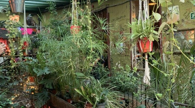ruin pub szimpla kert