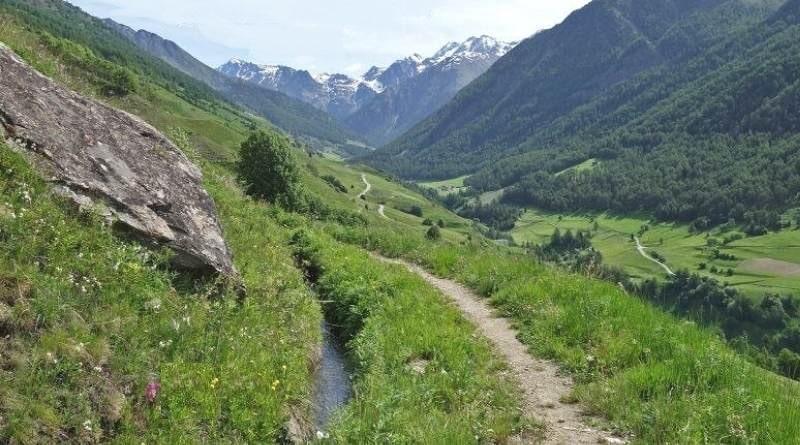 Roggia Ackerwaal e masi Glieshöfe in Val di Mazia
